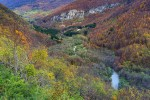 Colorful Valley