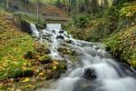 Divonne river source
