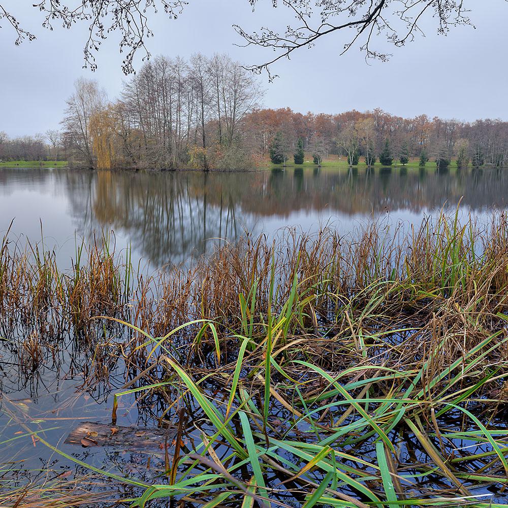 Grand format sur l'étang de Cessy
